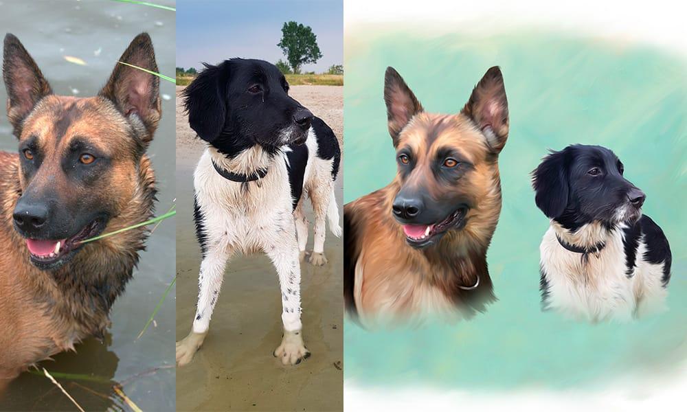Honden karikatuur