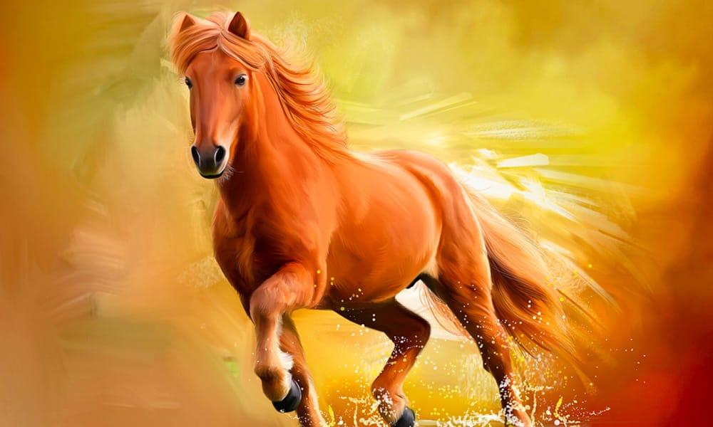 paard olieverf